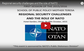 the role of nato and the
